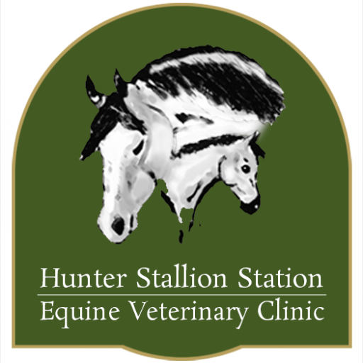 Hunter Stallion Station