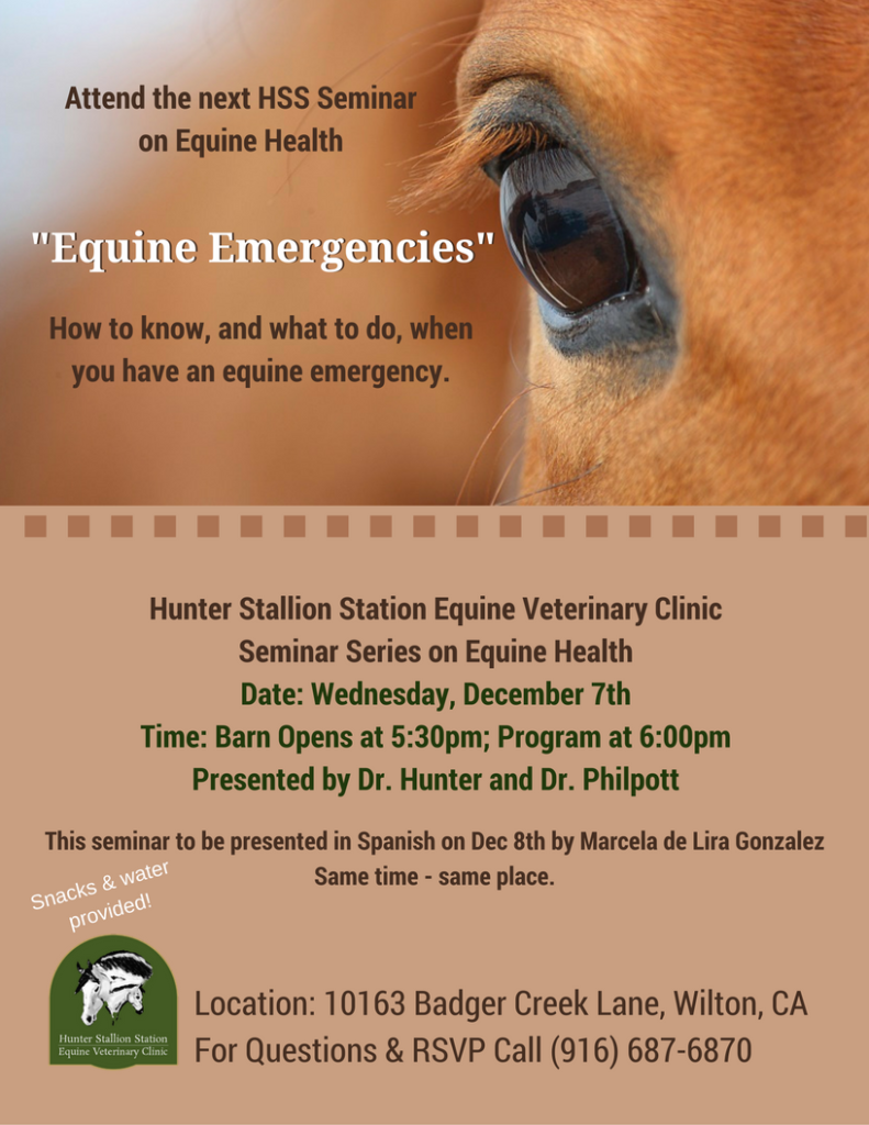 equine-emergencies